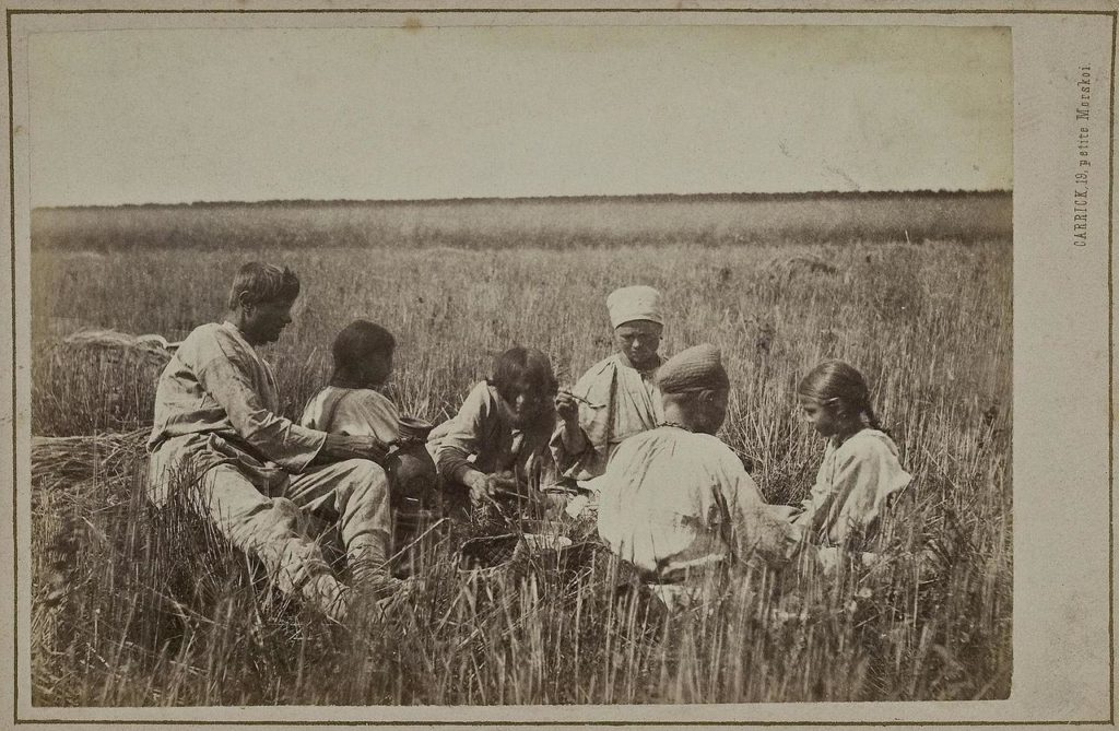 В. Каррик. Крестьянский обед во время жатвы (1870-е)