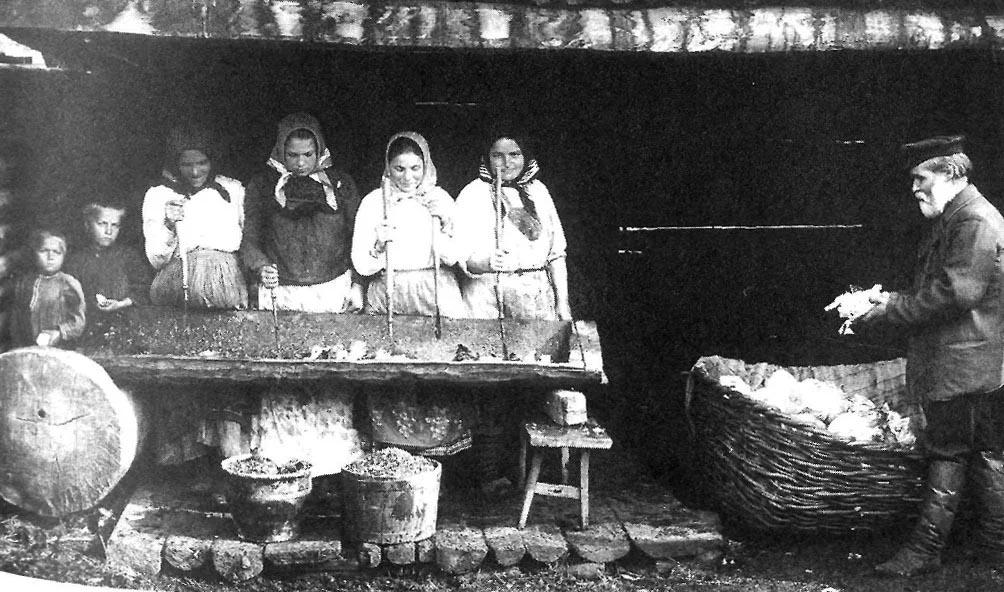 Заготовка капусты на зиму, конец ХIХ века