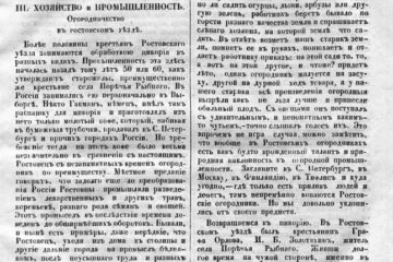 цикорий Ростовский уезд