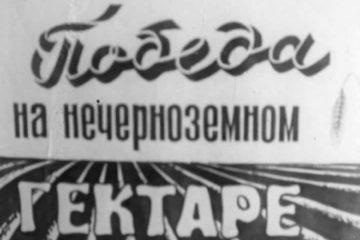 совхоз Шопша